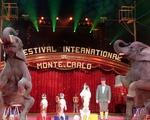Номер Венгро Немецкого цирка на Фестивале в Монте Карло 2018